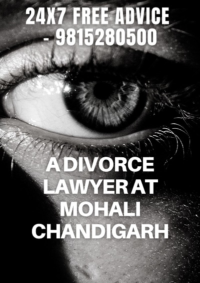 legal consultant in chandigarh